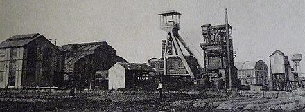 Photo d'époque du terrain minier de Raismes pour illustrer l'article : 6 mois sous le signe de l'évolution pour le centre soins pour la faune sauvage !